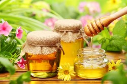 Мед при лечении простатита