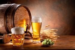 Пиво - причина развития простатита